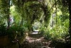 giardino,mediterraneo,orto,botanico,università,architettura,paesaggistica