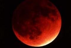 eclisse, luna, lunare, astrofili, evento, naturale, rossa, luna, rossa, osservatorio
